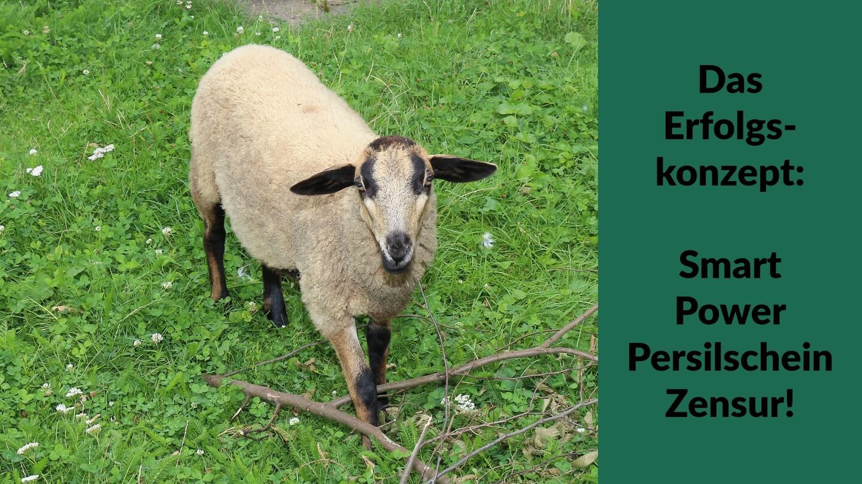 Schafe fürchten die Smart Power Persilschein Zensur und lassen sich führen!