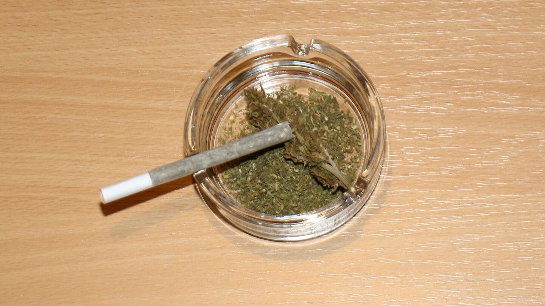 Tabak verursacht Gesundheitsschäden – Harm Reduction für Cannabis: pur rauchen!