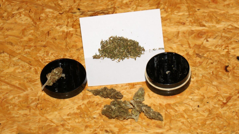 Nutzhanfblüten mit synthetischen Cannabinoiden oder gutes Marihuana – den Dealer fragen?