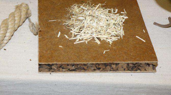 Nachwachsender Hanf für Leichtbauplatten – bindet CO2 und senkt Energiekosten für Logistik und Bauwesen
