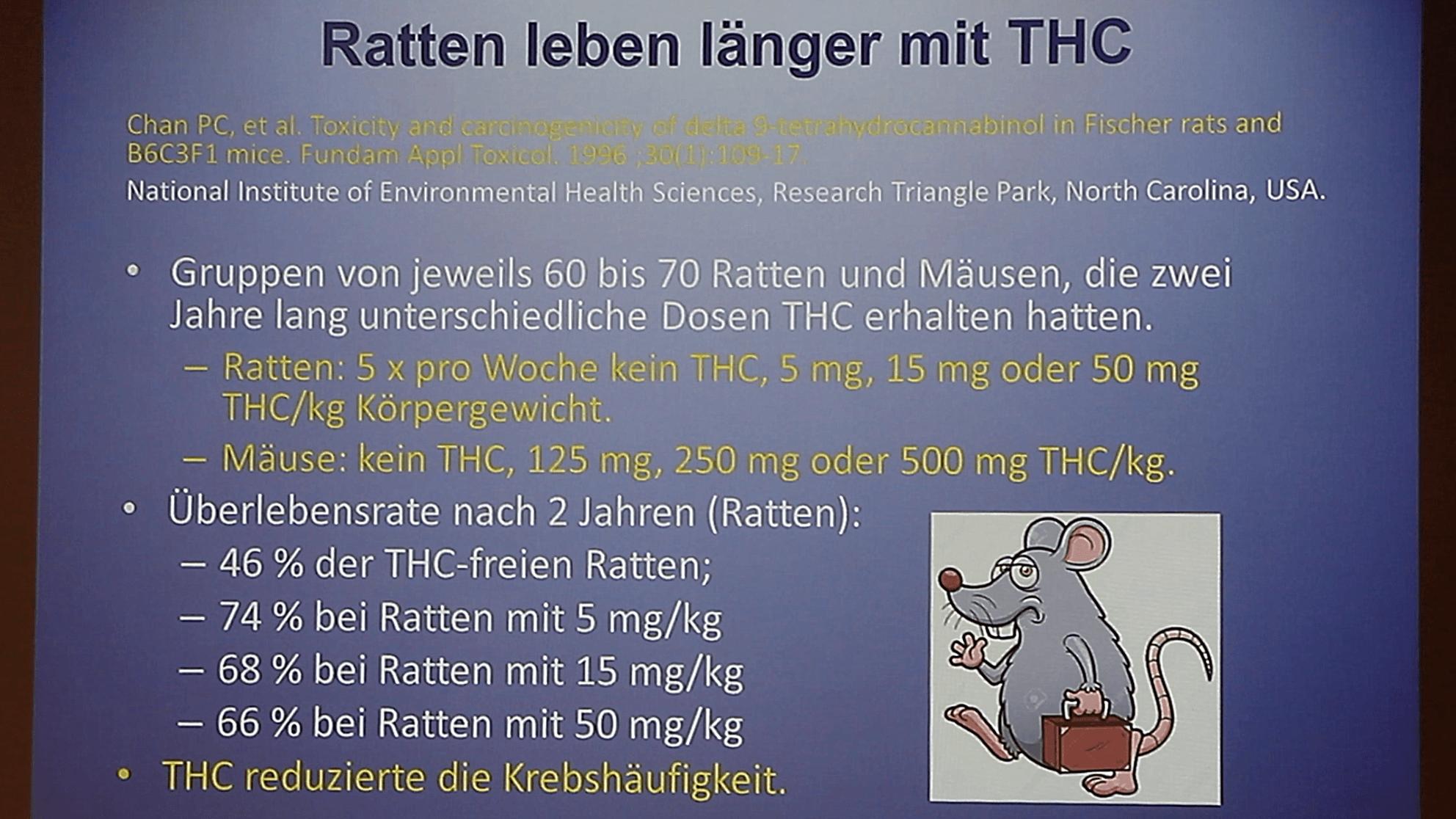 Bereits seit März 1996 öffentlich bekannt – THC mindert im Tierversuch das Krebs-Risiko von Ratten
